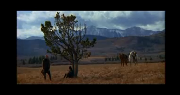 an analysis of the movie unforgiven The tomatometer score — based on the opinions of hundreds of film and television critics — is a trusted measurement of audience reviews for the unforgiven.